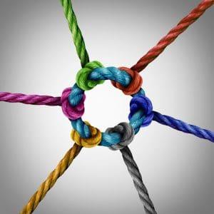 Netzwerk CRM-Tool und Newsletter-System